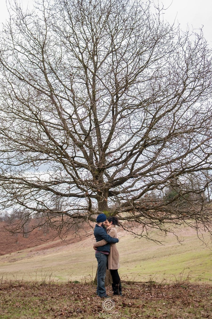 couple hugging under a wintery tree