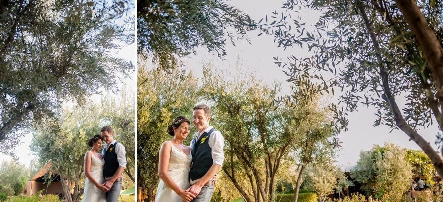 Bride and groom among the olive trees