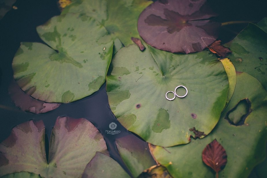 Rings lying on lilly pads at Caswell House