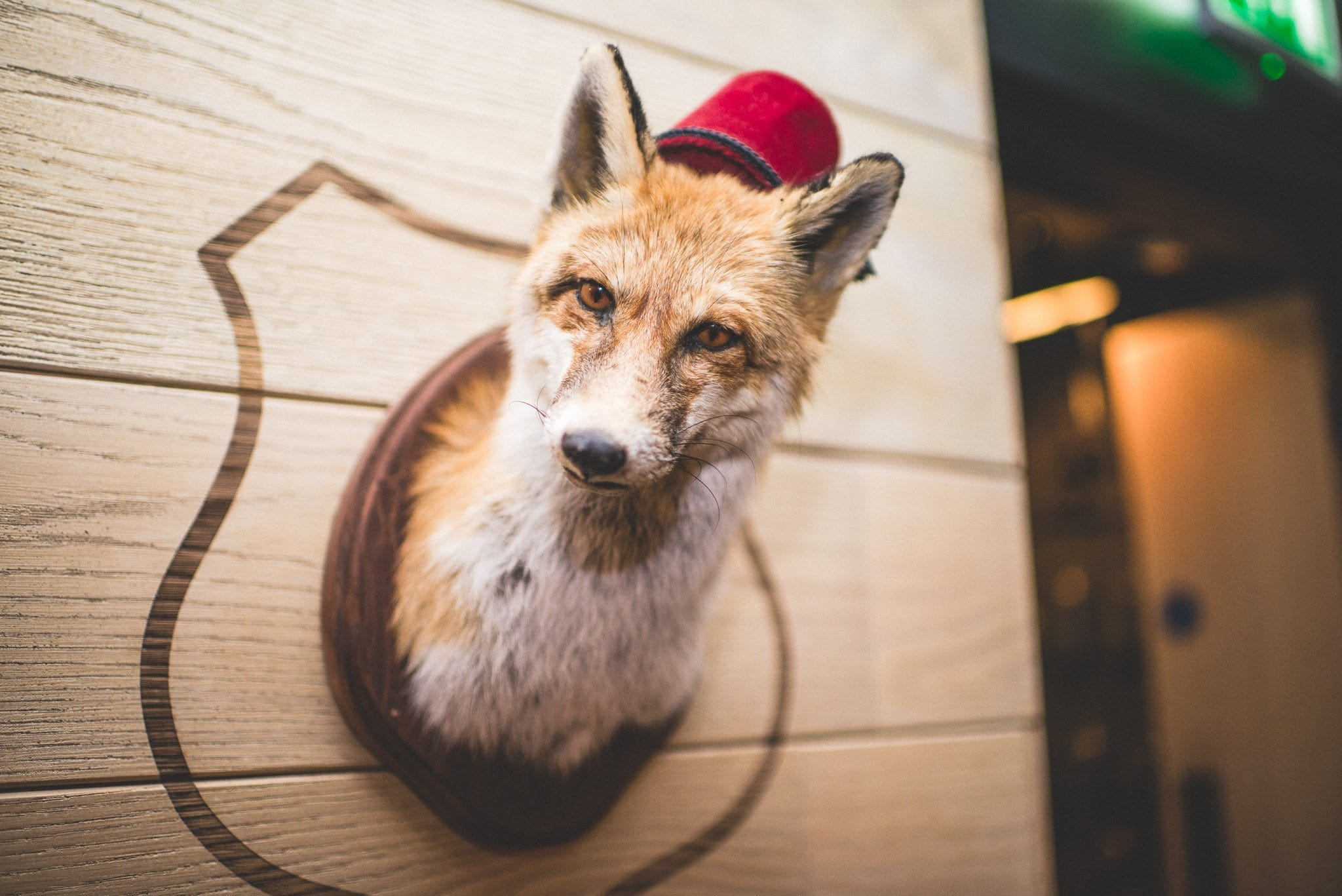 A taxidermy fox wearing a fez decorates The Hospital Club in central London