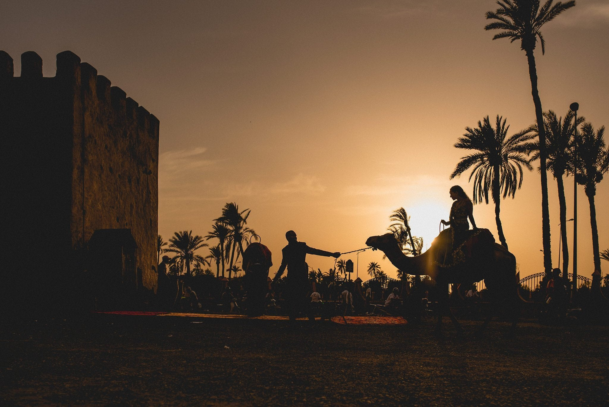 Indian groom leads his bride on a camel across the square in Marrakech. The couple are silhouetted against the setting sun.