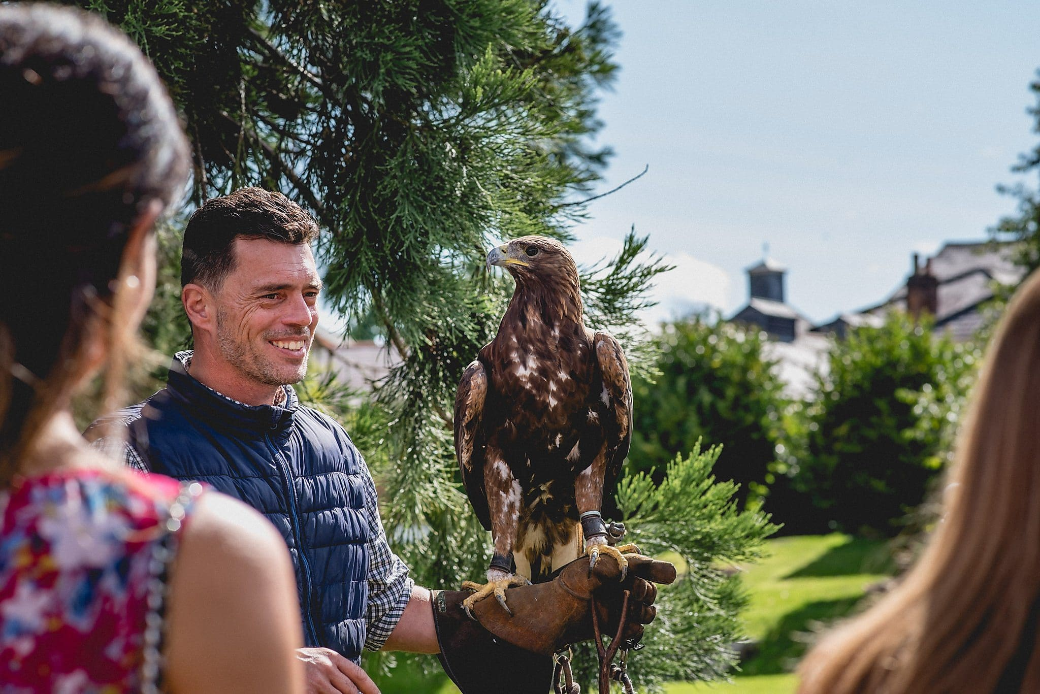 Bird of prey sits on handler's arm at wedding reception