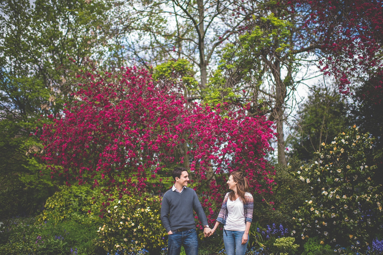 Engaged Couple standing hot pink cherry blossom at the Hurlingham Club
