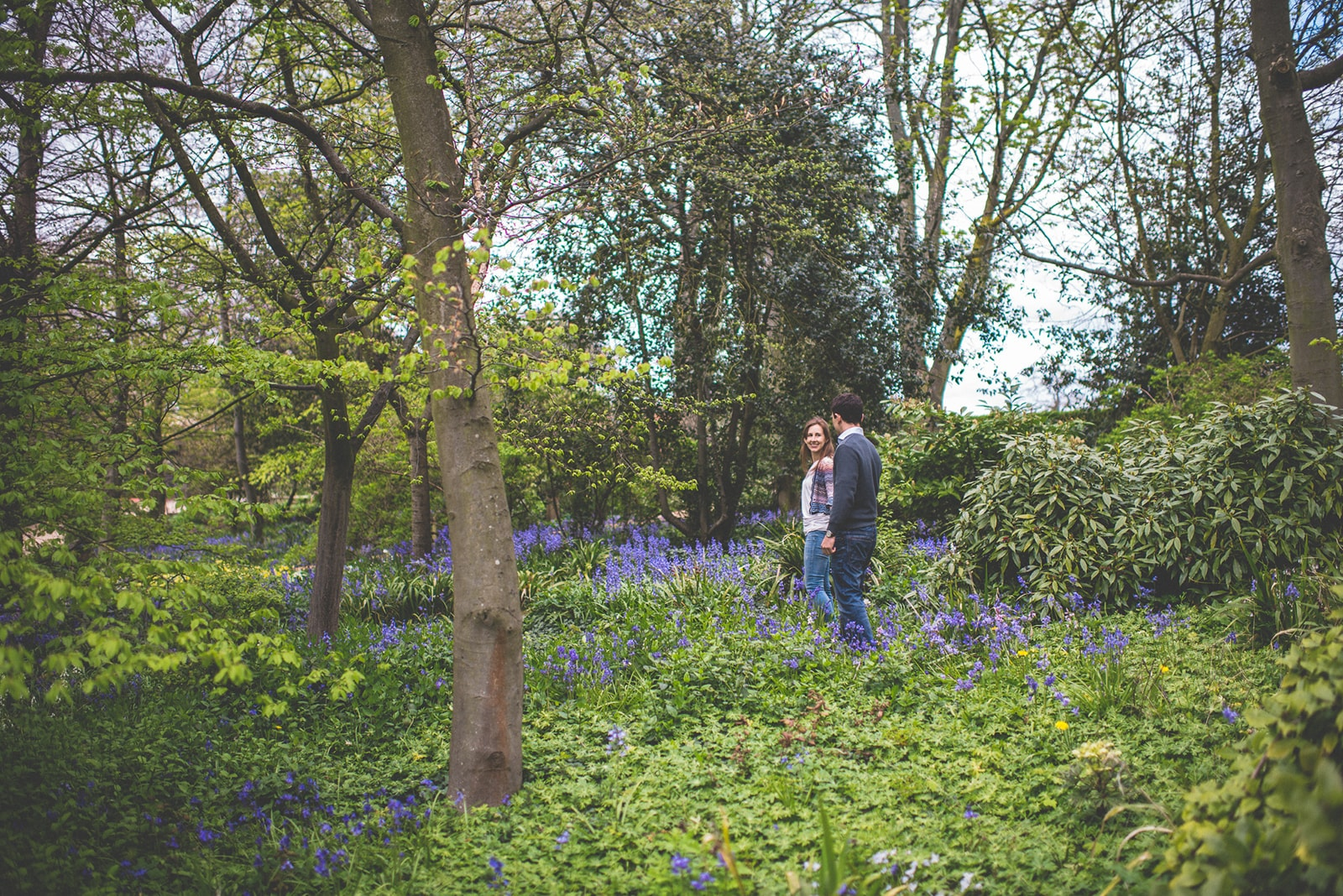 Engaged couple walking through a sea of bluebells at the Hurlingham Club