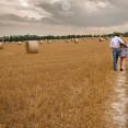 Romantic couple photoshoot, Eynsford couple photoshoot, Kent engagement photographer, engaged couple walking through hay field