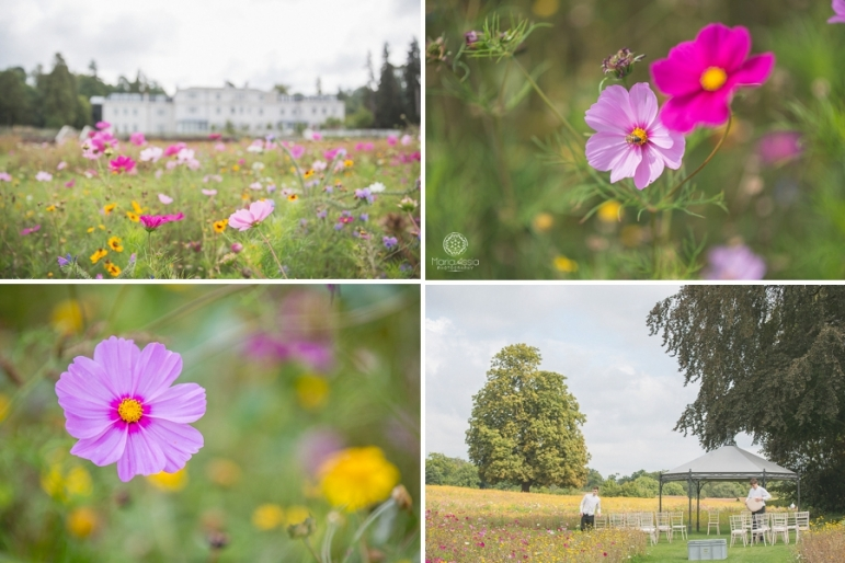 Coworth Park Manor House and wild flower meadow