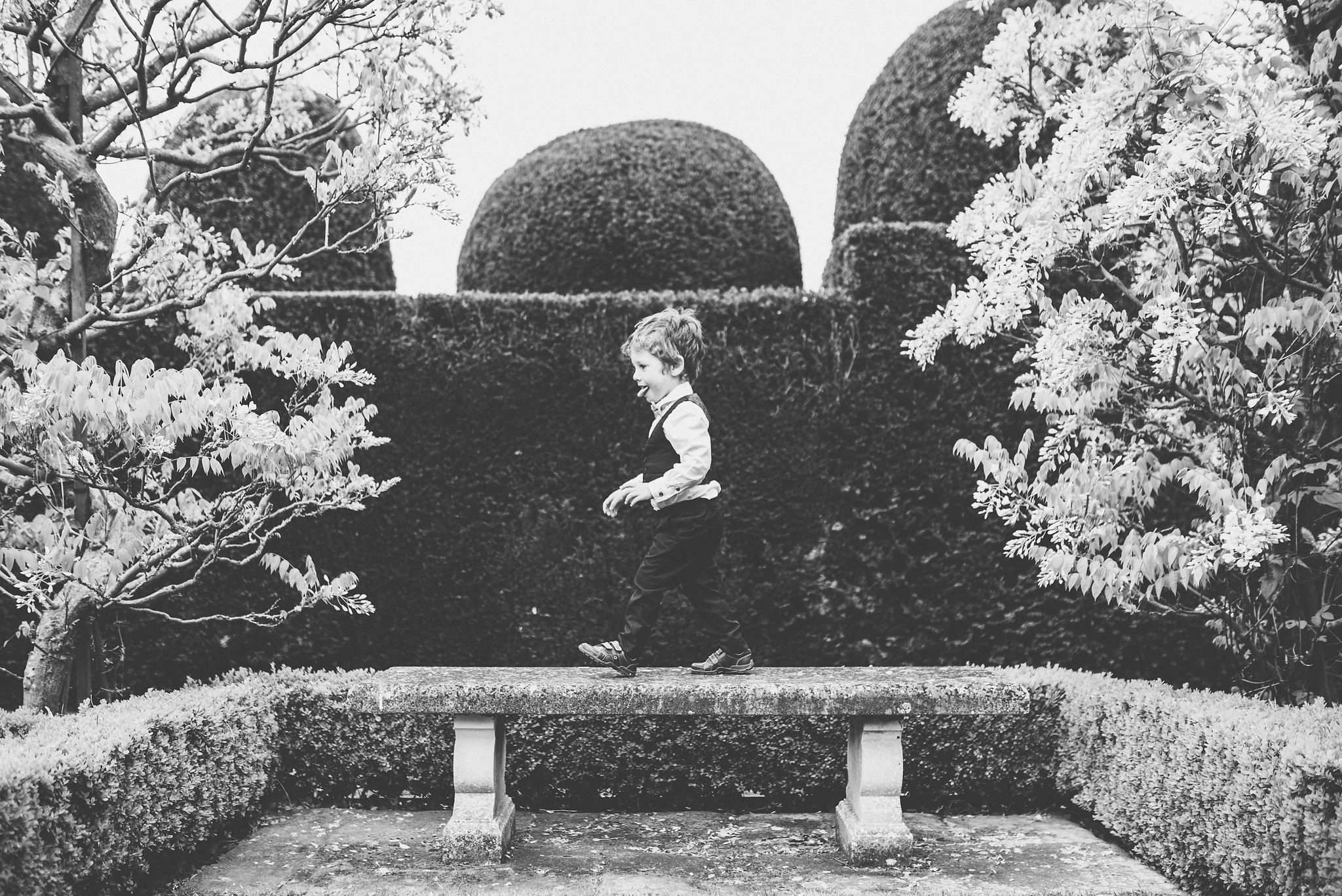 Boy playing in the Birtsmorton Court hedge maze