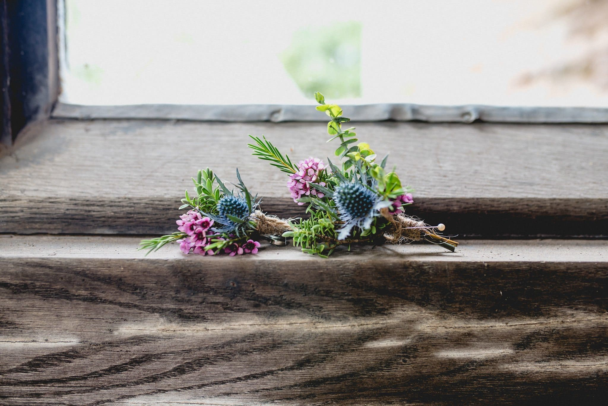 Two buttonholes each including a blue thistle are pictured on a wooden windowsill