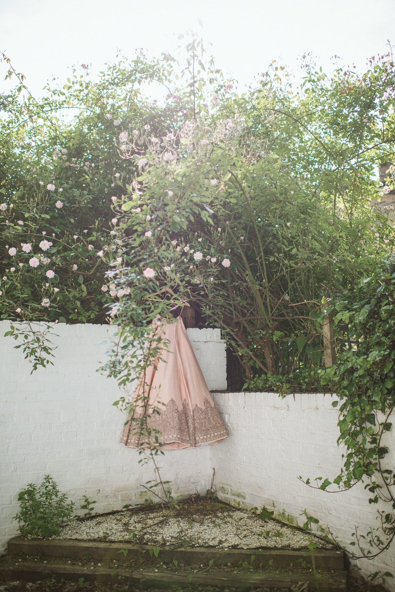 Sorayya's peach gown hangs in the garden with roses blossoming in front of it