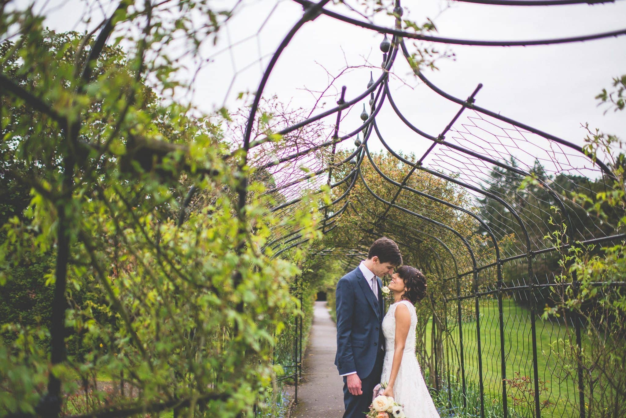 The couple stand with their foreheads touching, under an iron pergola with pale green foliage climbing up it