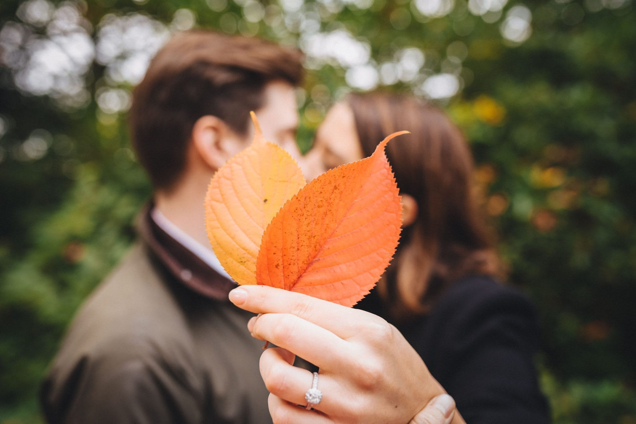 A couple hide behind autumn leaves kissing at a Pembroke Lodge engagement shoot