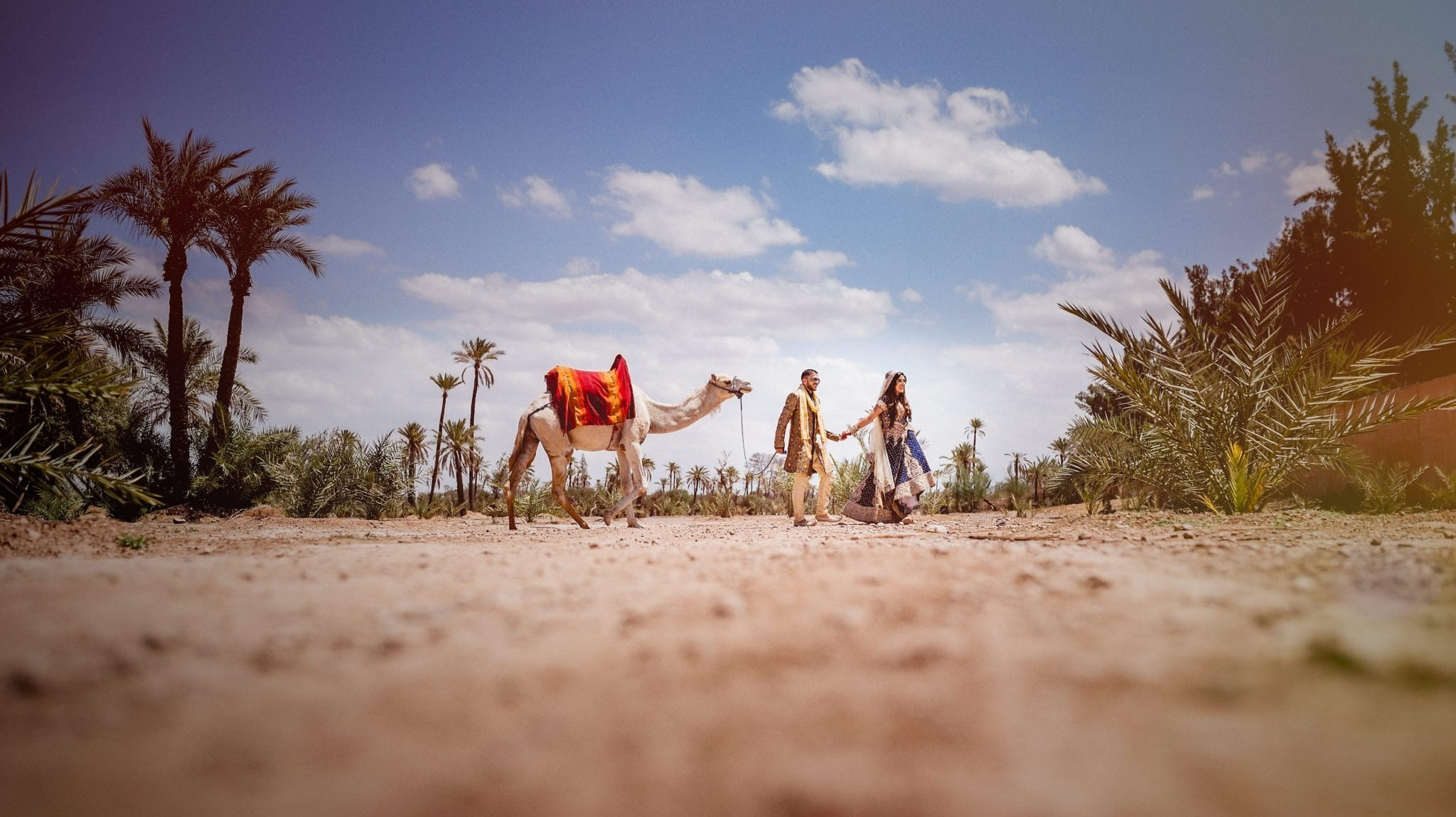 Bride leading her groom through the Sahara Desert in Morocco with a camel | Start Wedding Planning for a desert destination wedding