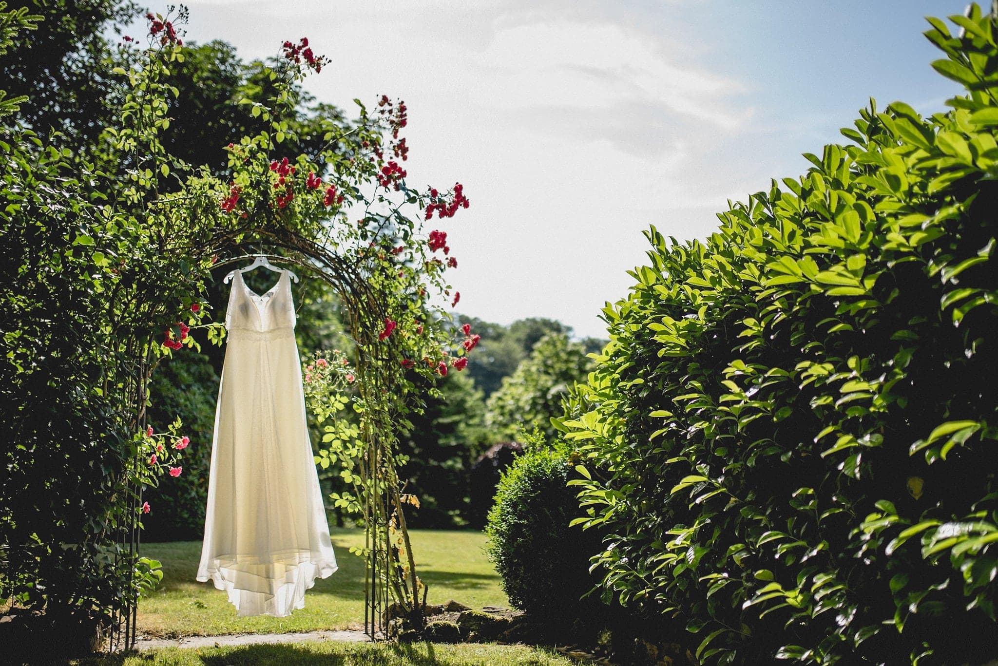 Sunlit wedding dress hanging in a rose arch